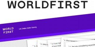 world first online seller survey