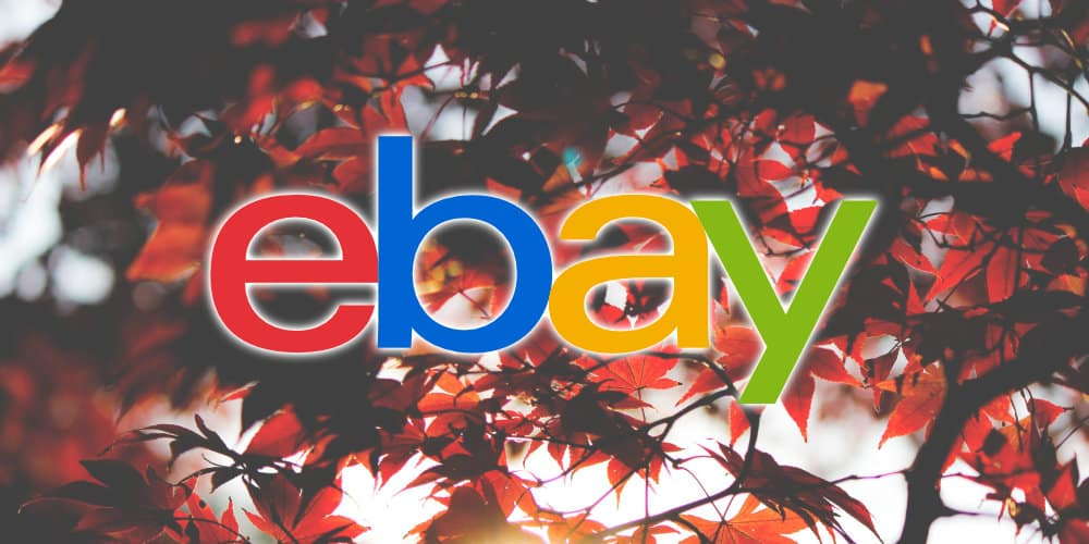 Ebay Delays New Store Subscription Tiers For Canada