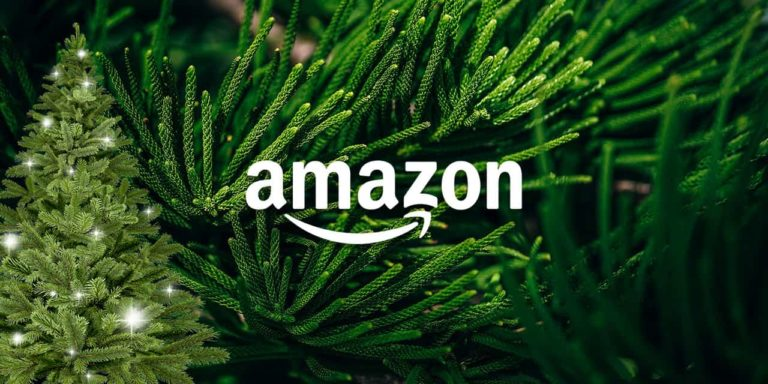 Amazon Starts Selling Real Christmas Trees