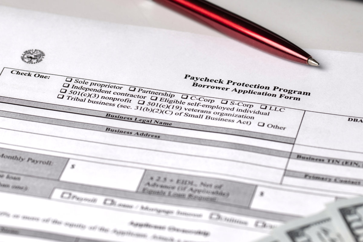 PPP Paycheck Protection Program Borrower Application Form