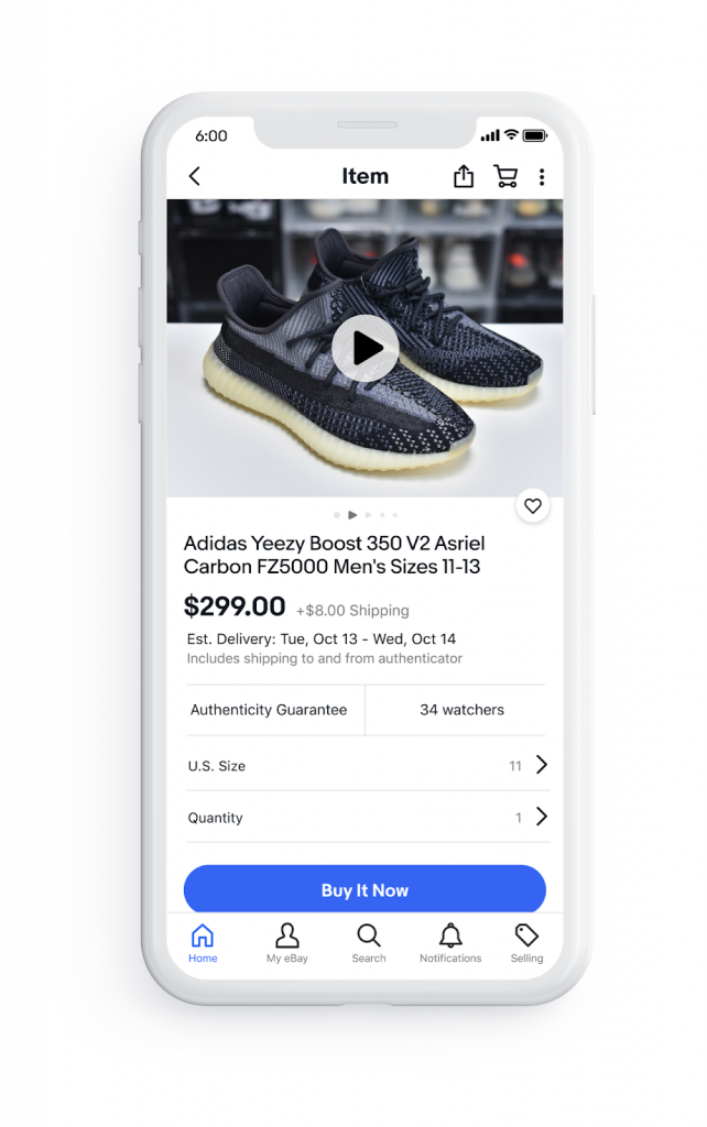 eBay Mock Up of Listing with Video