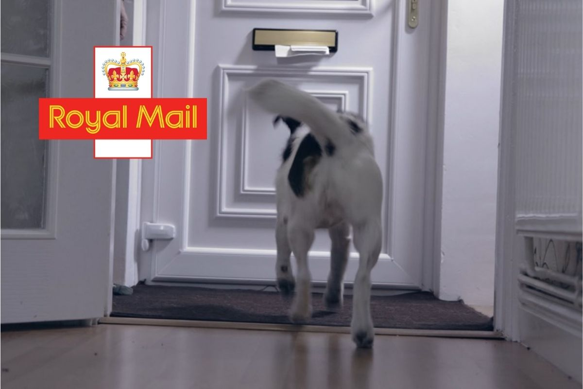 Royal Mail Dog Attacks